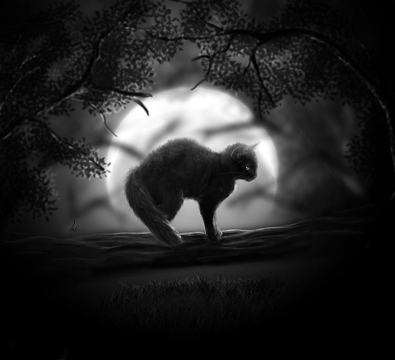 Фото Черная кошка стоит на дереве, на фоне луны, художница ...