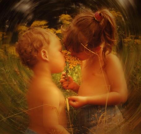 Фото Обнаженные по пояс мальчик и девочка, стоящие в высокой траве, нюхают цветок, наслаждаясь близким общением друг с другом