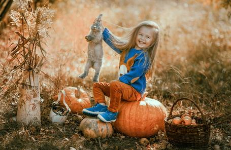 Фото Белокурая, смеящаяся девочка с длинными волосами, сидящая на тыкве на лесной опушке, держит за уши серого зайчика, рядом стоит корзина со спелыми яблоками