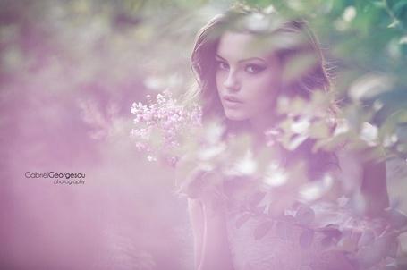 Фото Девушка в окружении сирени, фотограф Gabriel Georgescu
