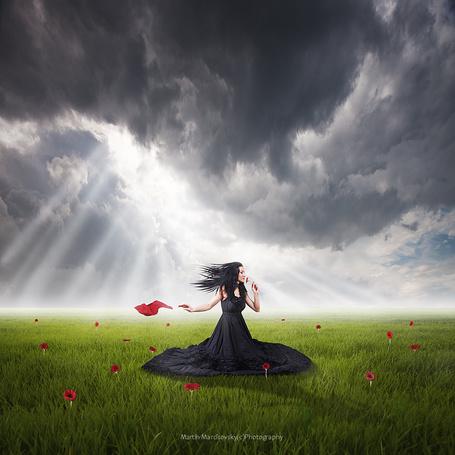 Фото Красивая, черноволосая женщина в длинном, черном платье, сидящая на зеленой лужайке в окружении красных цветов на фоне пасмурного неба и светящихся через темные тучи солнечных лучей, автор Martin Marcisovsky