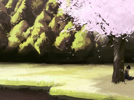 Фото Черноволосая девушка, сидящая на зеленой лужайке у водоема под цветущей весной сакурой с падающими на землю лепестками цветов (© Felikc), добавлено: 27.12.2013 01:11