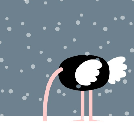 Фото Страус - Санта Клаус поднимает голову из снега