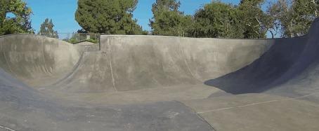 Фото Собака породы длинношерстный джек рассел терьер катается на скейтборде