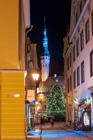 ���� ���������� ���������� ����, ������� � ����� ������ ������� �������, ������� / Tallinn, Estonia (� Felikc), ���������: 30.12.2013 00:43