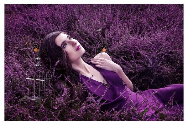Фото Девушка лежит на лавандовом поле