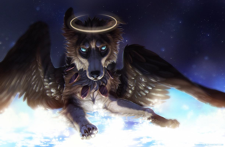 Картинка волков с крыльями