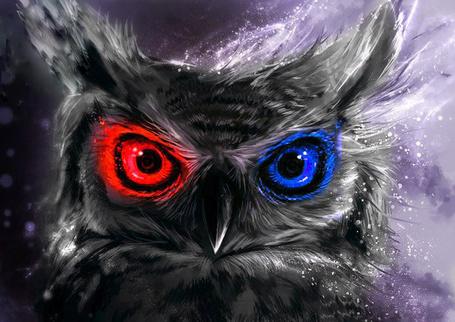 Фото Сова с красным и синим глазом, художник impraziel (© Banditka), добавлено: 21.01.2014 10:58