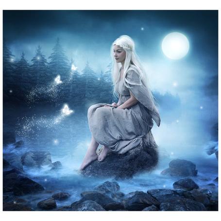 Фото Девушка сидит на камне на фоне елок и ночного неба, к ней подлетают бабочки, арт от автора LovesRedRose