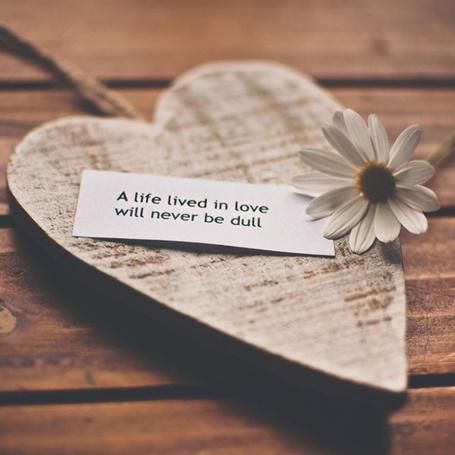 Фото Сверху сердечка лежит цветок ромашки и бумажка с надписью A life lived in love will never be dull / Жизнь, прожитая в любви никогда не будет скучно