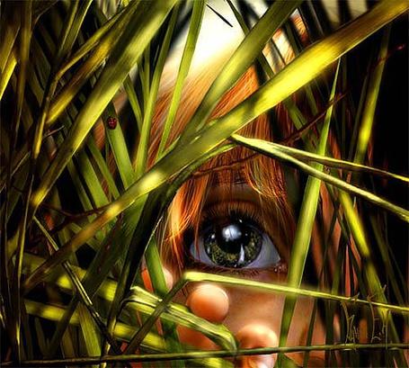 Фото Ребенок, спрятавшийся в траве, by svor