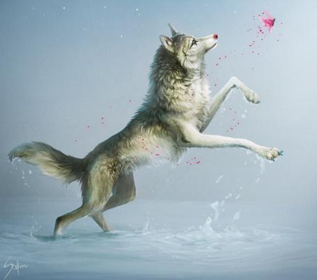 Фото Волк бежит за розовой бабочкой, художница Safiru