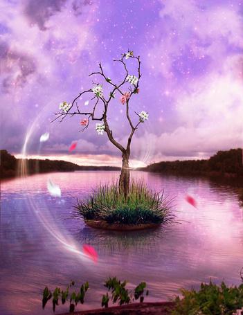 Фото Цветущая вишня стоит на небольшом островке в воде на фоне космического неба, фотоарт IgnisFatuusII