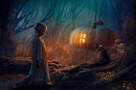 Фото Девочка стоит в лесу у тыквы с окошком и черной кошки, фотоарт zummerfish