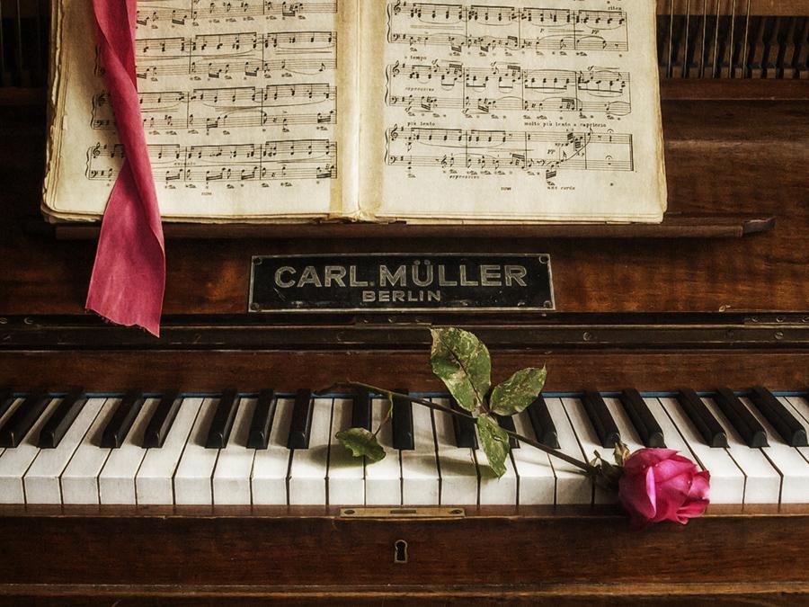 красивые картинки фортепиано ноты алкоголя