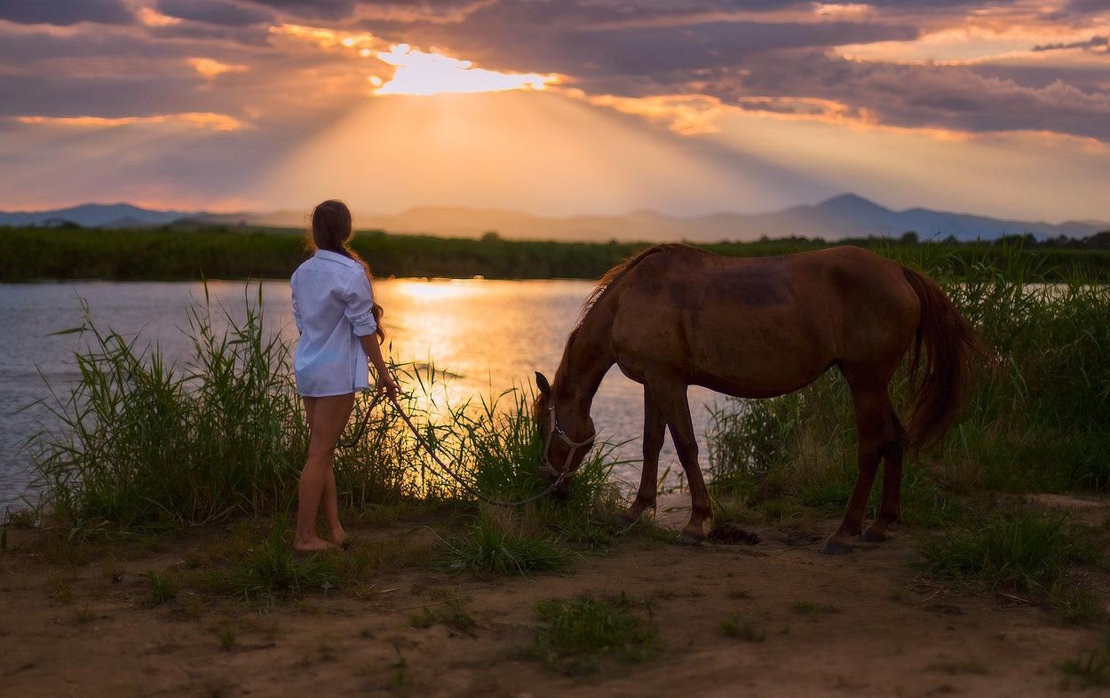 Фото Девушка в купальнике и надетой сверху белой рубашки, держащая под уздцы гнедую лошадь, уткнувшуюся мордой в зеленый куст травы на берегу озера, автор Андрей Кровлин