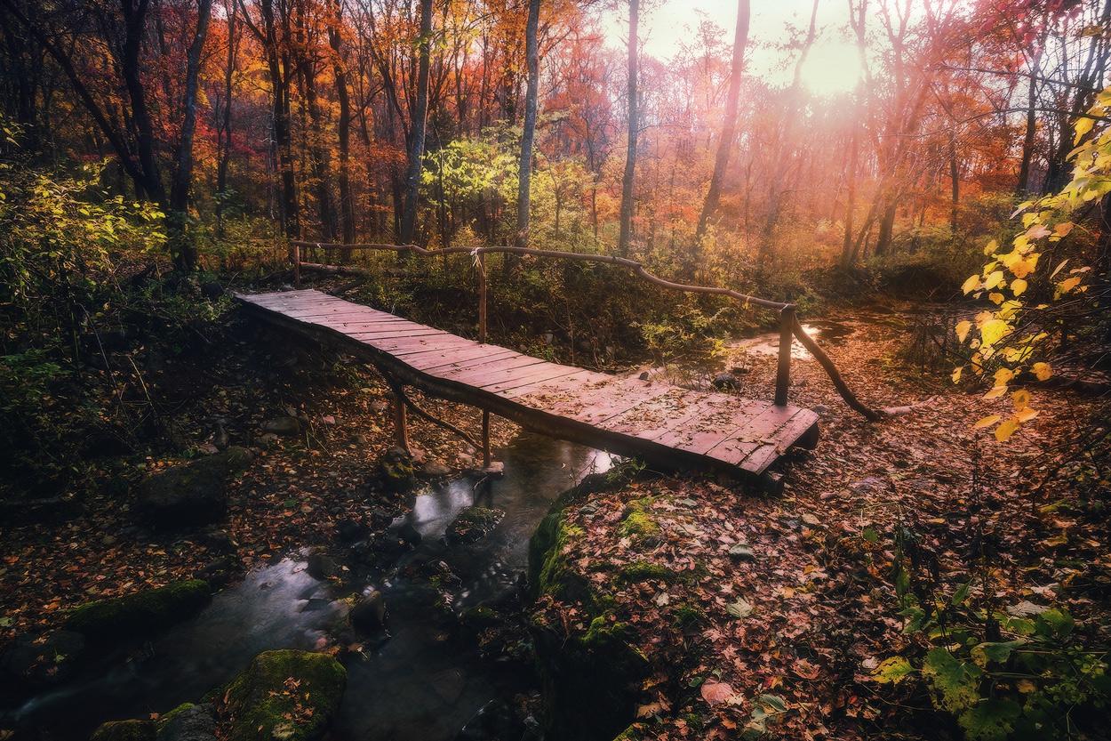 Фото Деревянный, пешеходный мостик, проложенный через неширокий ручей, протекающий в осеннем лесу, автор Андрей Кровлин
