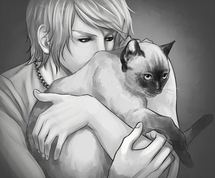 Картинки парни котенок аниме