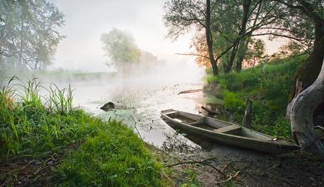 Фото Лодка, заполненная водой, стоящая на берегу озера у дерева на фоне рассвета, поднимающейся легкой, туманной дымки над водой
