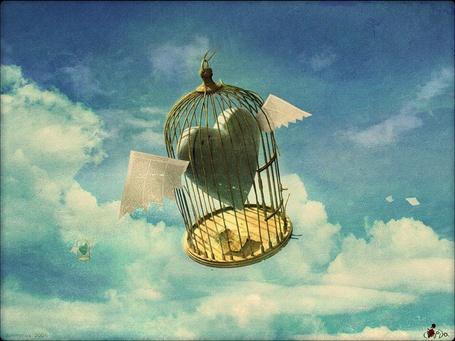 Фото На фоне облачного неба парят клетки с крылатыми сердечками внутри
