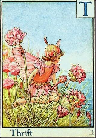 Фото Маленькая фея сидит в цветах армерии на склоне холма смотря на море, Thrift / Бережливость, художник Cicely Mary Barker / Сесиль Мэри Баркер