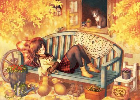 Фото Девушка спит на лавочке у дома, из окна которого выглядывает кот, рядом на земле сидят два кролика, стоят цветы