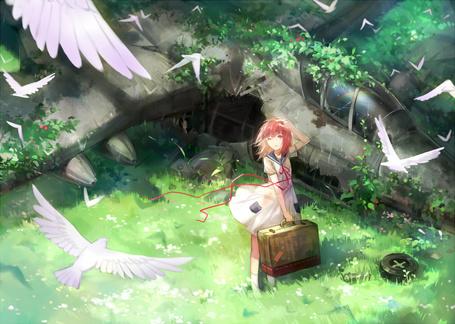 Фото Девушка с чемоданом в руках смотрит на порящих над ней чаек, стоя в траве около рухнувшего самолета