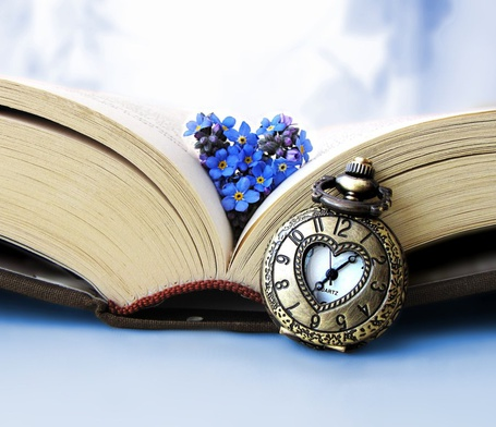 Фото Незабудки на открытой книге и часы рядом, автор MamaBakasi