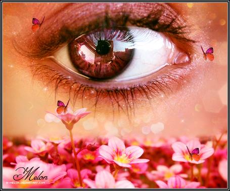 Фото Глаз девушки в окружении цветов и летающих бабочек, автор w-melon