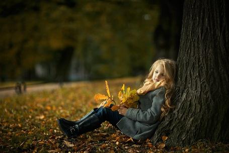 Фото Девочка сидит, прислонившись к дереву с букетом осенних листьев в руках