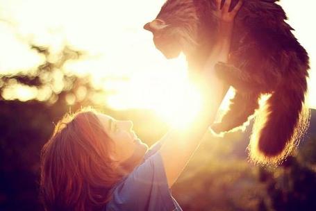 Фото Девочка держит котенка на руках, фотограф Jessica Christ
