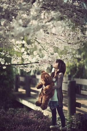 Фото Девушка с плюшевым медведем под цветущим деревом