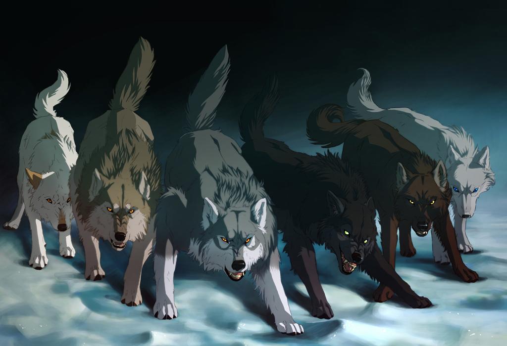 картинки волк уходит из стаи крыльев пустоты все турчанки совершенстве