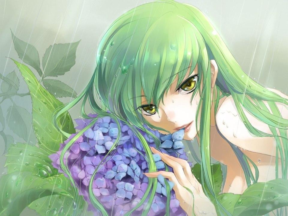 Картинки с кодами цветы 8