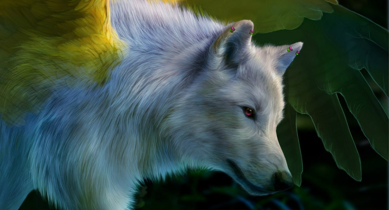 Фото Белый волк с желтыми крыльями