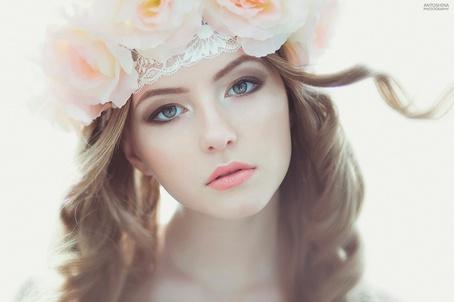 Фото Девушка с розами на голове, фотограф Tatiana Antoshina