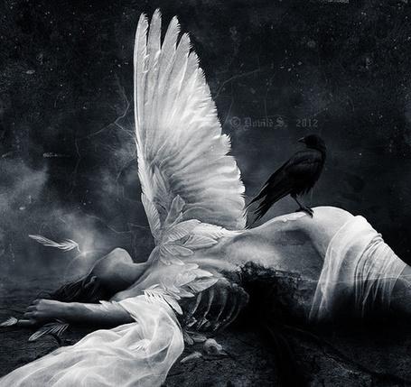 Фото Девушка - ангел лежит на земле, черный ворон сидит на ней