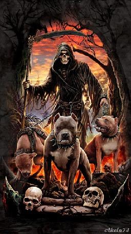 Фото Смерть с косой и тремя собаками