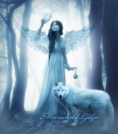 рептилии фото ангелы с волками красивые этому изображение отлично
