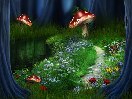 Фото Дорога среди цветов и больших мухоморов, около озера