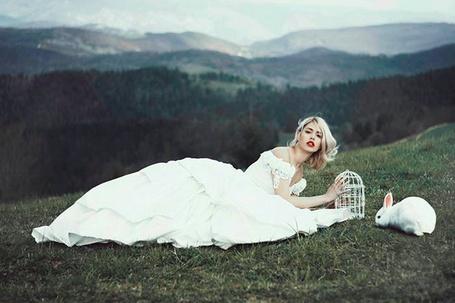 Фото Девушка в белом платье сидит на зеленой лужайке держа клетку в руках, рядом сидит кролик, фотограф Jovana Rikalo