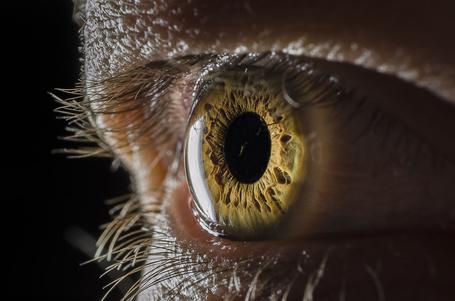 Фото Глаз человека крупным планом