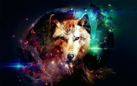 Фото Волчья голова, на фоне разрывающейся на куски планеты в космосе
