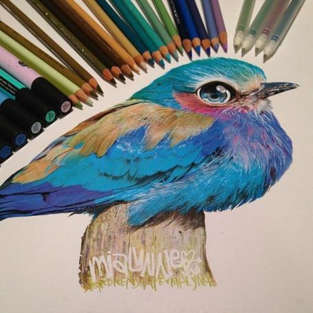 Фото Американская художница Карла Миалинн (Karla Mialynne), рисунок птички с разноцветным оперением сидящей на стволе дерева, с разложенными вокруг рисунка цветными карандашами и фломастерами (© Akela), добавлено: 22.04.2014 12:16