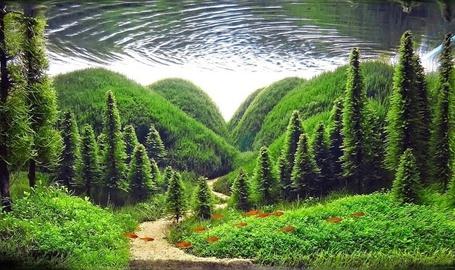 Фото Лес под водой - необычный декор аквариума