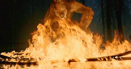Фото Оборотень в огне из фильма Van Helsing / Ван Хельсинг 2004