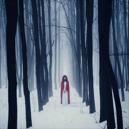 Фото Девушка в красной накидке стоит на снегу среди деревьев на фоне тумана, фотограф Francheska Lu