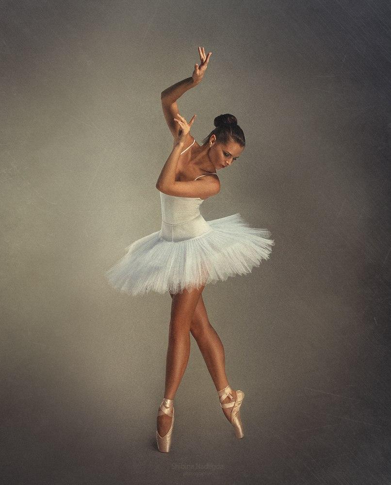 поэтому шерстяное балетные позы в шопенке для фото каталог