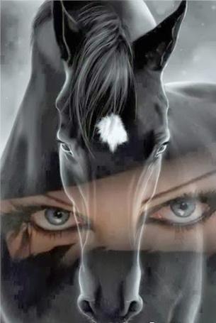 Фото Глаза девушки, на фоне головы лошади с белой звездочкой во лбу