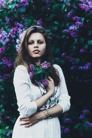 Фото Девушка в окружении сирени, фотограф Тамара Царева